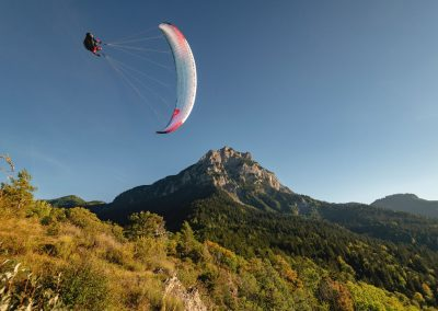 skywalk paragliders - ARAK - Petrol