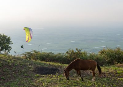 skywalk paragliders - MESCAL6